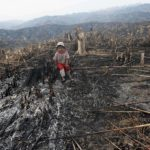 Un enfant au milieu de la forêt tropicale brûlée pour la culture d'huile de palme, Indonésie
