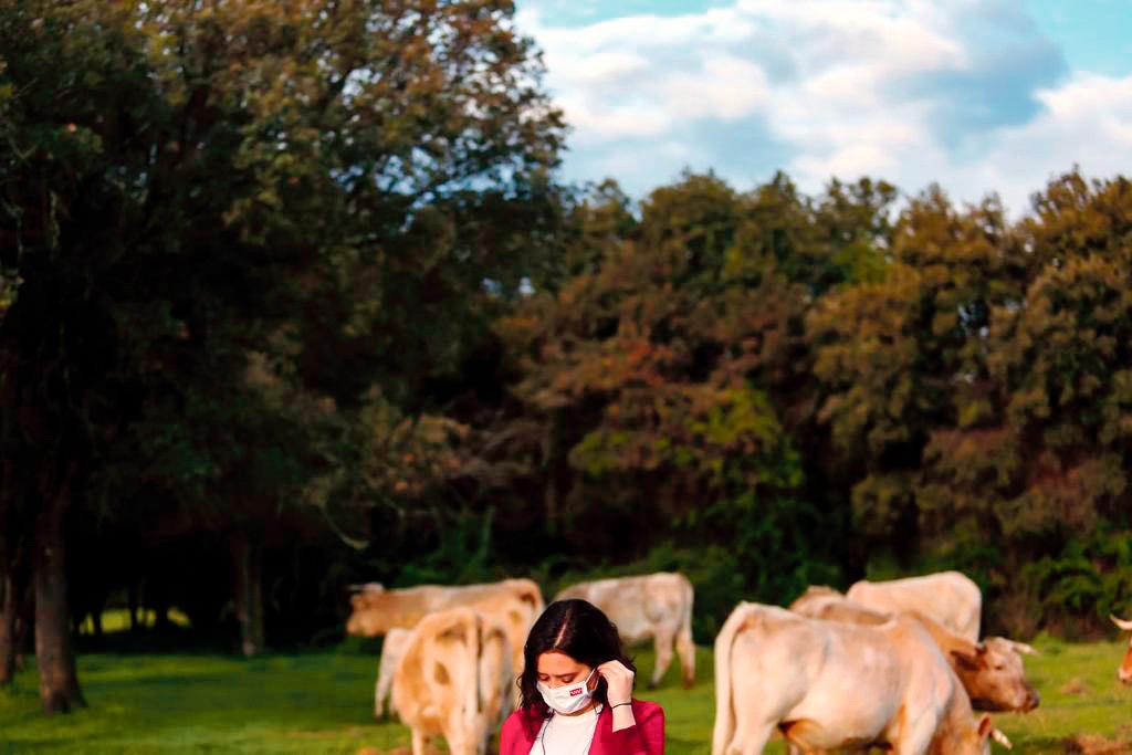 Isabel Díaz Ayuso dans un champ avec des vaches lors de sa campagne électorale 2021